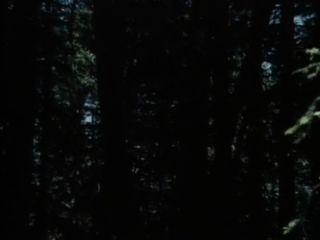 經典xxx:私人幻想1(1983)