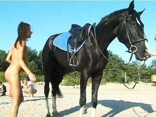 裸體青少年騎著馬在海灘轉頭