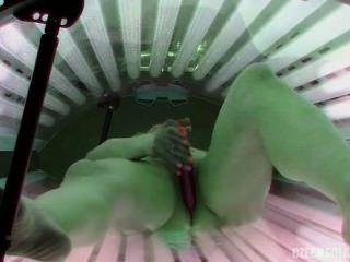 小雞在日光浴室玩耍