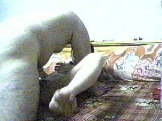 亞洲胖的男孩網凸輪