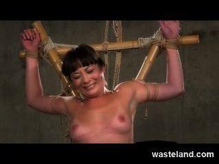地牢主人掛在femsub上竹和單尾鞭她辛苦