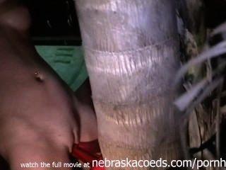 帶上與樹家庭視頻的性別