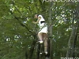 亞洲他媽的夫婦在森林裡