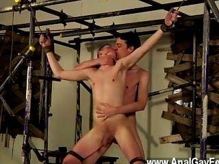 同性戀運動員肖恩就像很多權威的男孩,他只是想要一個
