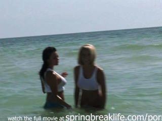 熱的蕩婦在海灘上