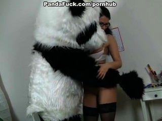 老師他媽的巨大的玩具熊