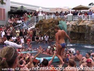 難以言喻的佛羅里達游泳池派對