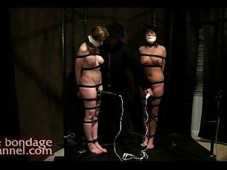 性高潮酷刑,當站立在小貓汁水坑時