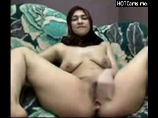 有擠奶她的山雀和手風琴的hijab的阿拉伯女孩