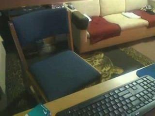 室友陷在spycam
