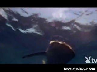 裸體女孩在鯊魚籠子裡