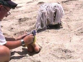 殘酷的癢折磨在海灘,堵塞和蒙上眼睛